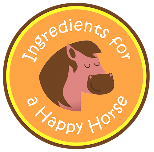 Monthly Subscription Box for Horses