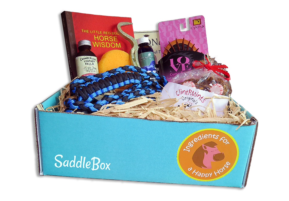 A Horse Box Monthly Subscription for Equine Lovers: SaddleBox