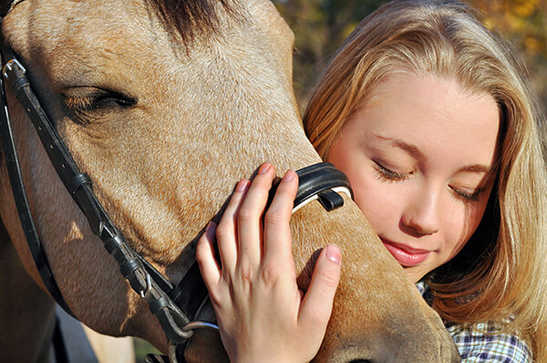 SaddleBox Horse Gift