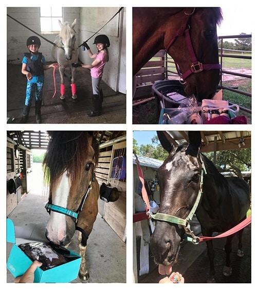 horse rider gift ideas