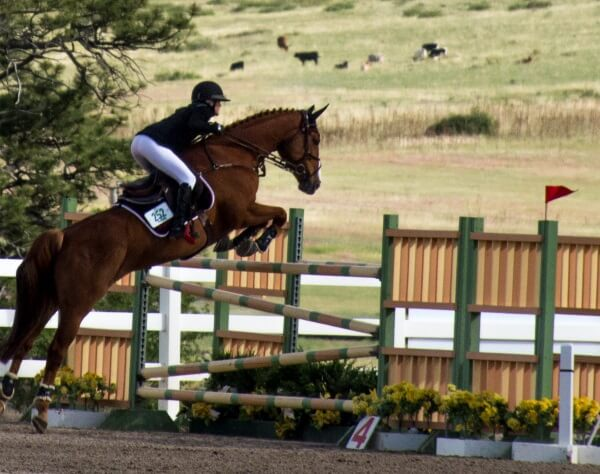 Be realistic with your horse goals