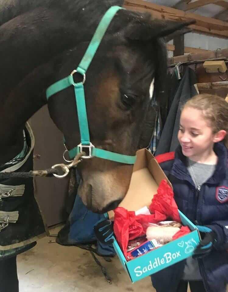 Ella Horse