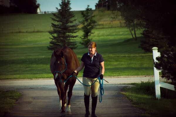 what to do when you can't ride your horse