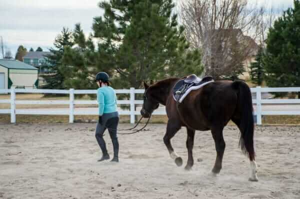 how to tack up your horse faster
